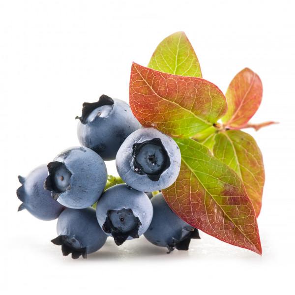 Blaubeer Aroma